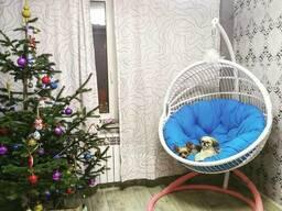 Подвесное кресло Teriko белое
