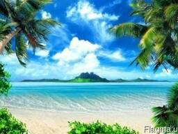 Поездки на море из Полтавы ( самые низкие цены в городе)