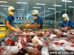 Поиск производителей в Индии