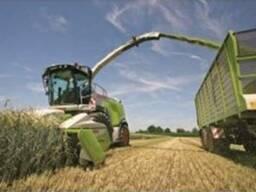 Покос травы подбор валков усборка кукурузы на силос
