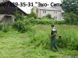 Уборка зарослей, вырубка кустарника Киев и обл.