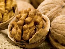 Покупаем грецкие орехи урожая 2020года