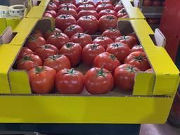 Покупаю помидоры