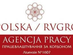 Рабочая Виза в Польшу и трудоустройство RVPolska