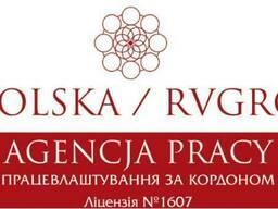 Польская рабочая виза (180/180, 180/360)