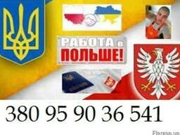 Польская рабочая виза D05, 180/180. Готовое решение!