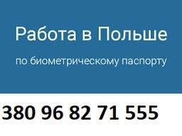 Польская рабочая виза на полгода!Трудоустройство