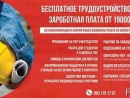 Помощь в получение визы и оформлении в Польше.