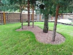 Посадка деревьев на участке-рулонного газона-травы-кустов