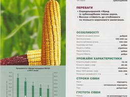 Посевмат кукурузы П8723 купить Украина
