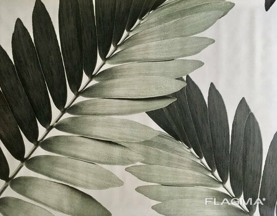 Постер лист пальмы комнатные Замия Palm Zamia Furfuracea Mexican 210 см х 124 см