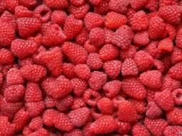 Предлагаем ягоду малину для переработки