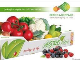 Предлагаю евротару для ягод, фруктов и овощей