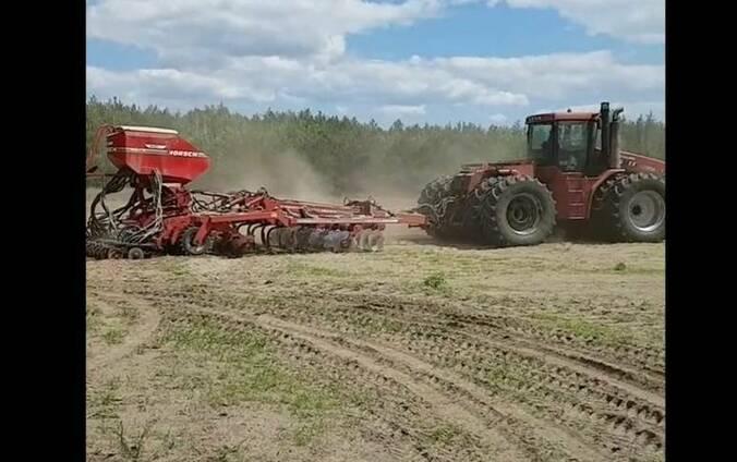 Предоставляем услуги по посеву зерновых.