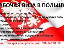 Помощь в оформлении визы в Польшу, Чехию. Страхование.
