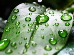 Прилипатель для растений, семян, гербицидов, пестицидов и др
