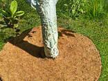 Приствольный круг EuroCocos из кокосового волокна диаметр. .. - фото 2