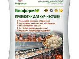 Пробиотики для кур-несушек Биоферм