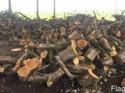 Продаем дрова фруктовые (яблоня, груща) от 500 грн метр куб.