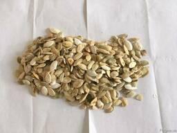 Продаємо ядро гарбузового насіння, українська багатоплідна,
