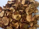 Продаємо яблуко сушене кільцями (чіпсами), Хмельницкая обл . - фото 1