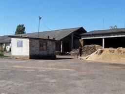 Продається діюче виробництво брикетів PinyKey та дер. вугілля