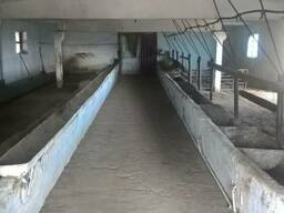 Продается животноводческо – складской комплекс в пгт Ширяево