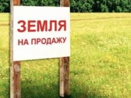 Продам 8 га земли , рынок 7 км, Одесск обл, Овидиопольск р-н