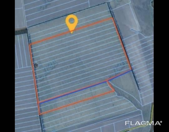 Продам 93 га земли сельскохозяйственного назначения
