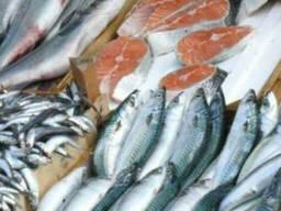 Продам брюшки лосося