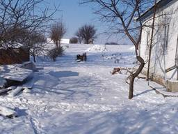Продам дом Переяслав-Хмельницкий район с. Гайшин – 115 кв. м. ,
