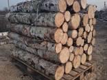 Продам дрова береза, продам дрова берёза, кругляк - фото 1