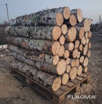 Продам дрова береза, продам дрова берёза, кругляк
