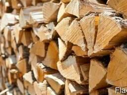 Продам дрова (чурки, колотые) с доставкой по Киеву и области