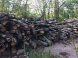 Продам дрова дубовые длина 1метер - фото 3