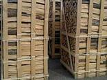 Продам дрова колоті на експорт (граб, ясен, дуб, береза) - фото 2