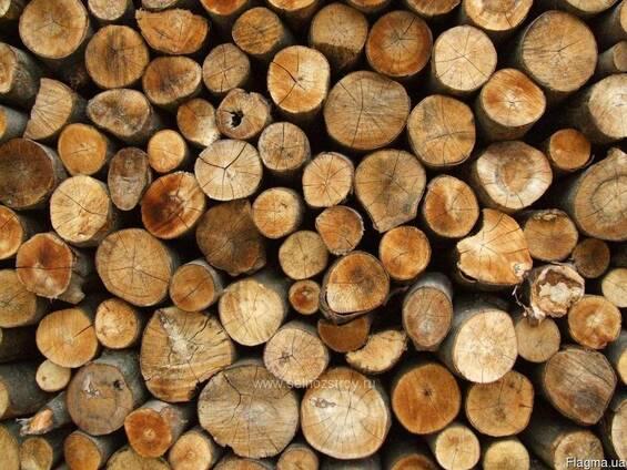 Продам дрова топливные и технологические