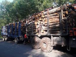 Продам дрова різних порід, пиловник і тех. сировина