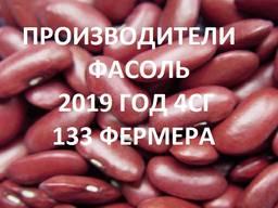 Продам фасоль. Справочник 2019 4СГ (133 фирм)