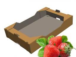 Продам ящики для клубники, фруктов.