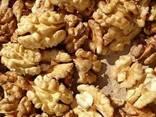 Продам грецкий орех. - фото 2