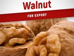 Продам грецкий орех на экспорт