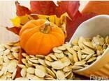 Продам Грецкий орех, семечка тыквы, квасолю - фото 3