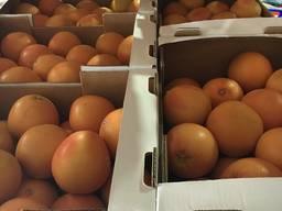 Продам Грейпфрукт ЮАР оптом помощь в доставке по регионам