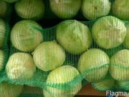 Продам капусту 2-го сорта оптом