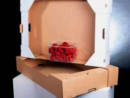 Купить лоток под ягоду