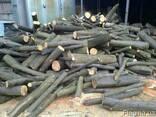Продам кругляк дрова метровки Дуб Бук Граб