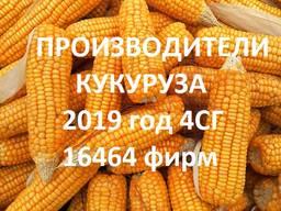 Продам кукурузу. Справочник 2019 4СГ (16464 фирм)