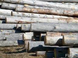 Продам лес круглый сухостой хвойных пород