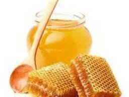 Продам лесной мёд 2018
